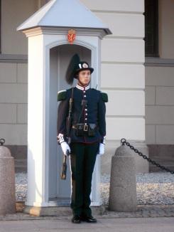 Palace guard_3