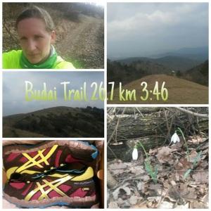 Budai_Trail_Timi