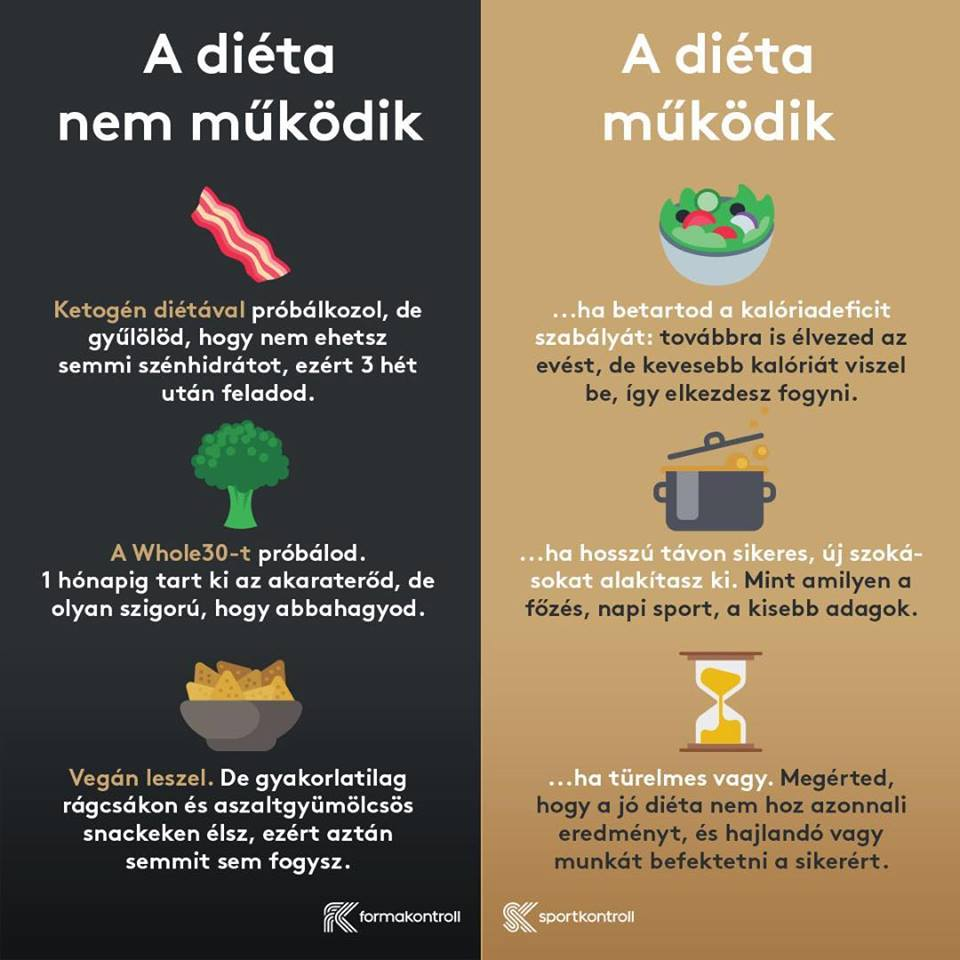ketogén étrend 3 szakasz 10 nappal
